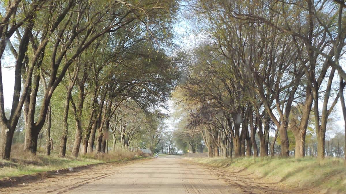 Área Medio ambiente de Catriló